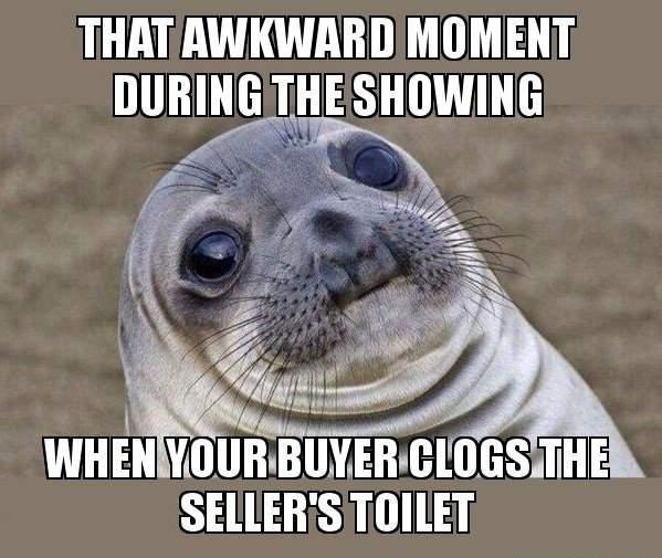 real-estate-meme-awkward-seal-moment